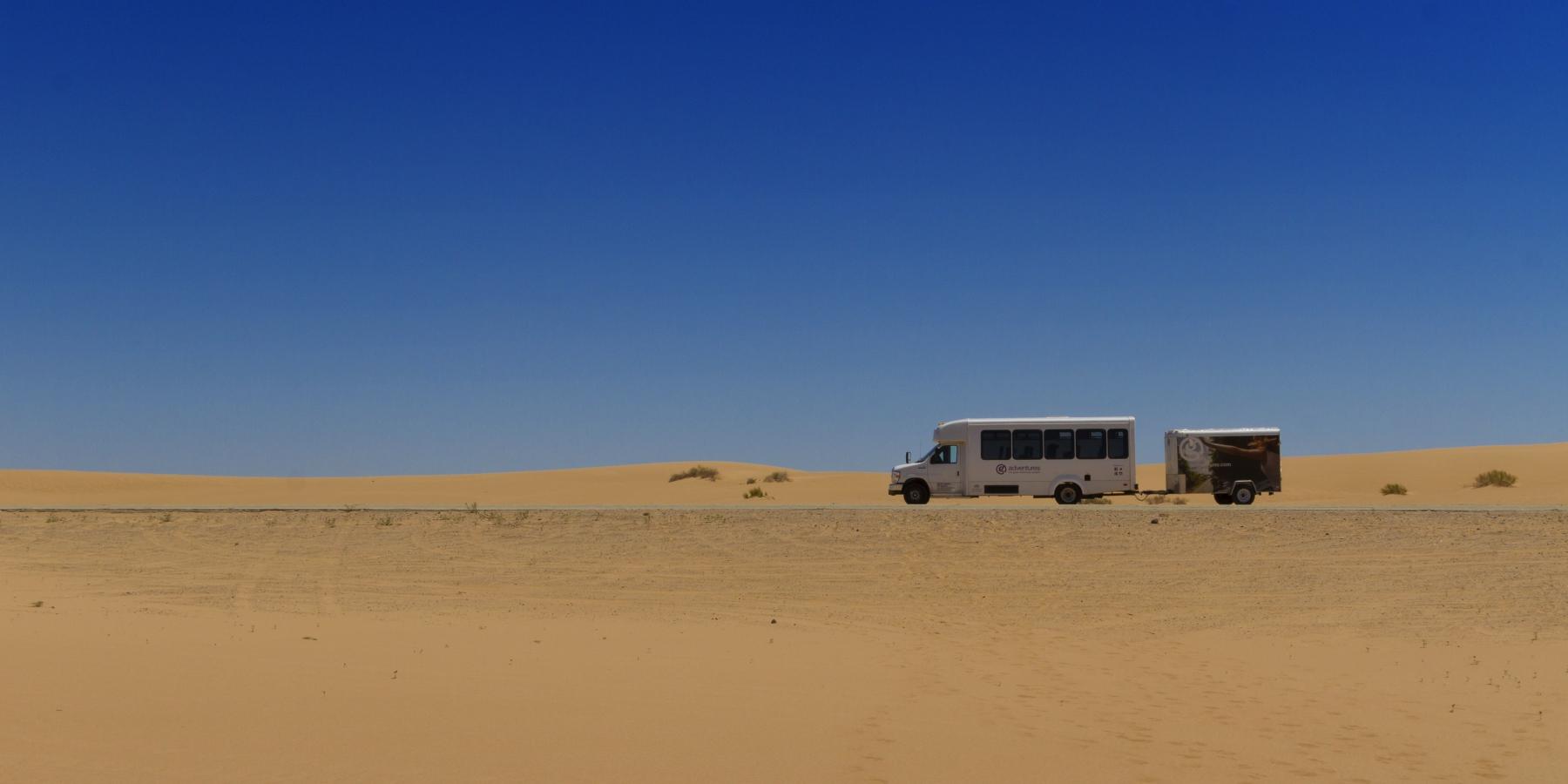 pierde desert de desert)